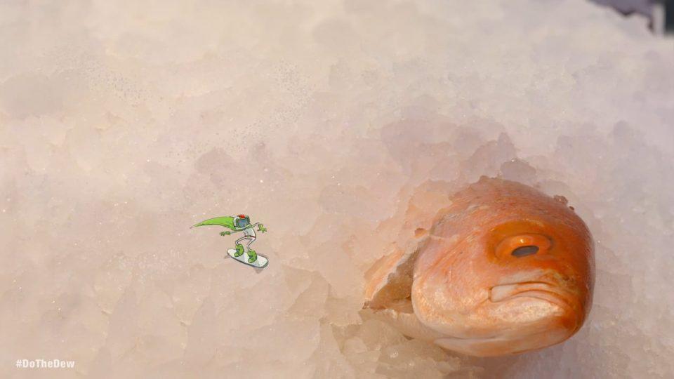 "Mtn Dew ""Fishgrind"" - Vimeo thumbnail"